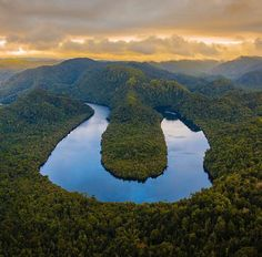 Horseshoe Bend on the Gordon River The Absolute BEST Things to do in Tasmania (top 50)