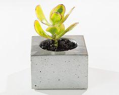 Hex concrete planters/ concrete succulent planters/ by INSEKDESIGN