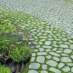 Begrünte Fugen bieten einen ökologischen Mehrwert für urbane Räume. Mit dem neuen Abstandshalter-System von ARENA® lassen sich fließende Übergänge mit drei unterschiedlichen Fugenbreiten schaffen. Die technisch ausgefeilten Abstandsnocken gewährleisten in Kombination mit der Steindicke eine hohe Stabilität. #ökologisch #ökobeläge #wege #weggestaltung #gestaltungsidee #pflastersteine #rasen #grün Stepping Stones, The Outsiders, Outdoor Decor, Home Decor, Scenery, Patio, Paving Stones, Driveway Entrance, Lawn