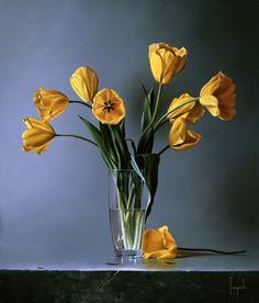 Tulipani Gialli - Dario Campanile