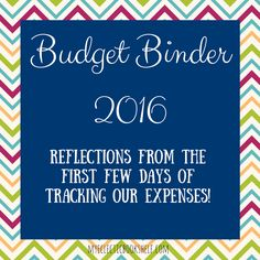 Reflections from using our Budget Binder 2016