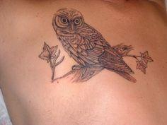 Steve's Owl Tattoo