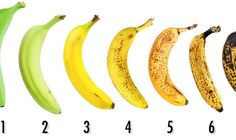 How to know which banana is the healthiest and most nutritious Source by Healthy Foods To Eat, Healthy Eating, Healthy Recipes, Nutrition Food List, Troubles Digestifs, La Constipation, Banana Drinks, Gastro, Time To Eat