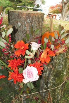 Hot pink and orange flowers