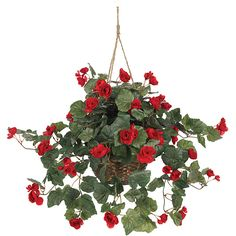 Shop For Cheap Multiflora Bracketplant Wall Hanging Ivy Artificial Rose Artificial Flower Rattan Hangings For Wedding Home Decoration 7 Colors Making Things Convenient For Customers Festive & Party Supplies Artificial Decorations