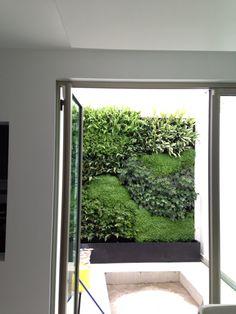 Muro verde green wall living wall jardin vertical