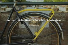 Hitch a free ride with anyone riding around town with a yellow rack on their bike and get a bit of true Dutch experience. If you are lucky enough, locals may show you around! Friday Facts, Dutch Bike, Hiking, Bicycle, Yellow, Free, Walks, Bike, Dutch Bicycle