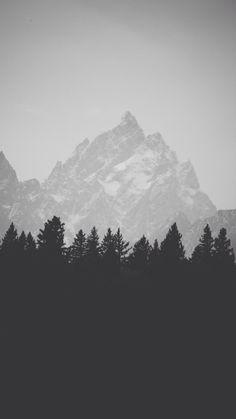 Winter Mountain Peak Pine Forest Line iPhone 6 Plus HD Wallpaper