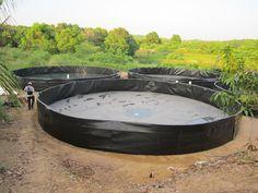 Barbacoa, Aquaponics, Tub, Sculpting, Fish, Outdoor Decor, Home Decor, Ponds, Agriculture