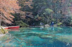 Blausee, a magical place that really worth a walk there.