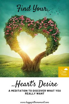 Find your heart's desires. Emotional Resilience, To Manifest, Mindfulness Meditation, You Really, Your Heart, Filter, Finding Yourself, Printables, In This Moment
