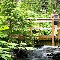 Les activités dans la nature bénéfiques pour la santé mentale   PsychoMédia