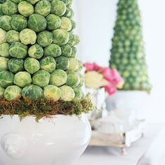 Use brussels sprouts (Yes, brussel sprouts!) to make these pretty spring topiaries.