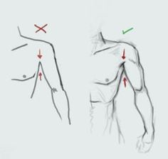 Google Image Result for http://japho.com/wp-content/uploads/2009/11/How-to-Draw-Bodies.jpg #Drawingtips