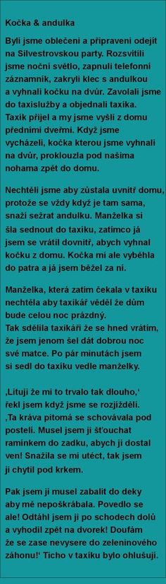 Kočka & andulka | torpeda.cz - vtipné obrázky, vtipy a videa English Jokes, Monday Motivation, Haha, Thoughts, Dreamworks, Words, Funny, Quotes, Random