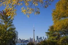 October is a great time to visit Toronto if you like cooler temperatures, smaller crowds, and stunning fall foliage. Learn more.