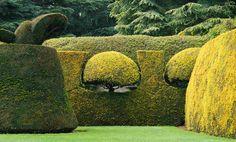 Ascott Garden topiary