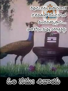 Life Lesson Quotes, Life Lessons, Telugu Inspirational Quotes, Hindu Rituals, Lord Shiva Hd Images, Happy Life Quotes, Food Garnishes, Dark Spots, Good Morning