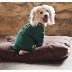 Fashion Pet Outdoor Dog Warm And Toasty Pajamas Medium Green by Ethical Products/Fashion Pet   SALE♥   Available at BuyDogSweaters.com Pets For Sale, Pet Sale, Dog Accesories, Dog Pajamas, Outdoor Dog, Animal Fashion, Warm, Pj, Dogs