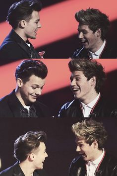 Nouis. Their adorableness is too much to handle