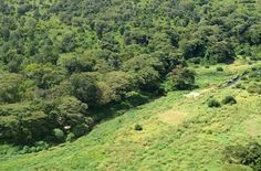 Mathews Ranges-Samburu Kenya