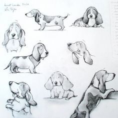 Exciting Learn To Draw Animals Ideas. Exquisite Learn To Draw Animals Ideas. Chien Basset, Basset Hound Dog, Beagle Puppies, Animal Drawings, Cute Drawings, Drawing Sketches, Bassett Hound, Puppy Drawing, Illustrations