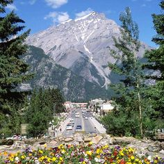 Meander Down Banff Avenue in Canadian Rockies