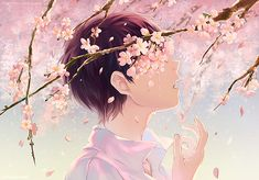 Anime Illustration of Boy crying because of his love? behind a branch of Sakura Blossoms by Kaze-Hime