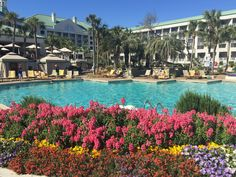 Westin Resort Hilton Head Island spring 2017