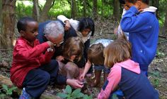 How can teachers introduce forest school principles to their curriculum? Forest schools helps students develop confidence and creativity by teaching practical, outdoor skills – and teachers don't need a woodland on their doorstep to incorporate the ideas -  The Guardian