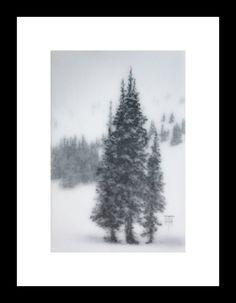 Original Art Mountain Spruce IV by Terri Heinrichs - Etsy - $125