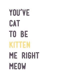 Cat Phrase by waila Skinner
