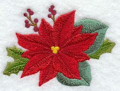 Poinsettia and Holly design (F7444) from www.Emblibrary.com
