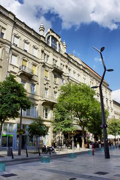 In The Heart, Budapest, Uni, Street View, Luxury, Modern, Trendy Tree
