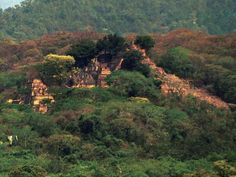 Forgotten Mayan city 'discovered' in Central America by 15-year-old | Americas | News | The Independent