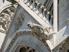 Cathédrale Notre-Dame d'Amiens.Une gargouille de la façade.