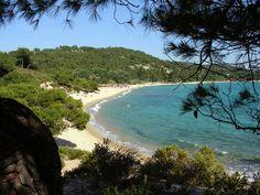 Akti Kalogrias ! Famous #beach in #Sithonia #Halkidiki  http://gohalkidiki.com
