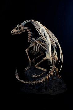 Hey, I found this really awesome Etsy listing at https://www.etsy.com/listing/188307649/dragon-skeleton-sculpture
