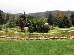 Venergía  Instalación de sistema de bombeo solar Jardín Botánico