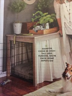 Dog cage featured in better homes and garden magazine.  Curtains are put up with tension rods.