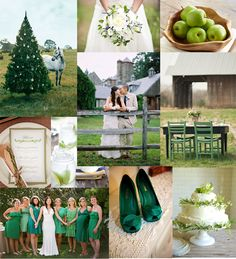 A Contrast Of Greens Wedding