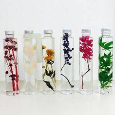 最近とても人気があるのが、ボトルに入ったハーバリウム。異なる植物のボトルを並べるととってもきれいです。