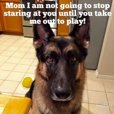 So true...play time is a special part of my day!!