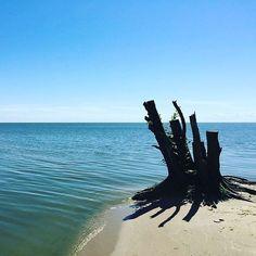 4 отметок «Нравится», 1 комментариев — Павел Клочков (@ovlgroup_p.klochkov) в Instagram: «#OvLGroup_NERINGA_Туры_и_Путешествия Предлагаем отличный отдых на жемчужине балтийского моря в…»