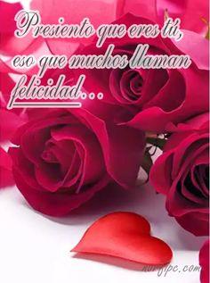 Presiento que eres tú, eso que muchos llaman felicidad. #Felicidad My Precious, You And I, Smoothies, Love Quotes, Feelings, Rose, Flowers, Love Marriage Quotes, Love Thoughts