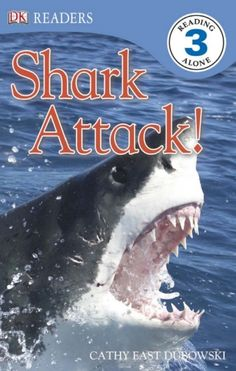 shark attacks grice gordon