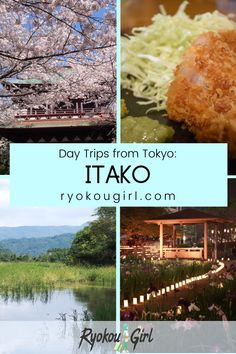 Planning a trip to Tokyo? Check out my 'Day Trips from Tokyo' series. Just an hour outside the world's biggest city, this hidden gem offers a fun-filled day that includes a traditional boat cruise, baking traditional Japanese senbei crackers, a visit to a Buddhist temple and tasting local sake! #JapanVacation #VisitJapan #LoveJapan #DayTripsFromTokyo #VisitTokyo #ThingsToDoInTokyo #WhereToGoInJapan #WhatToDoInJapan Visit Tokyo, Visit Japan, Asia Travel, Japan Travel, Best Countries To Visit, Day Trips From Tokyo, Travel Advise, Buddhist Temple, Boat Tours