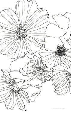 flowers dibujo 30 Simple Ways to Draw Flo - flowers Line Art Flowers, Flower Art, Draw Flowers, Doodle Drawing, Doodle Art, Arte Linear, Watercolor Paintings For Beginners, Coloring Pages Inspirational, Watercolor Journal