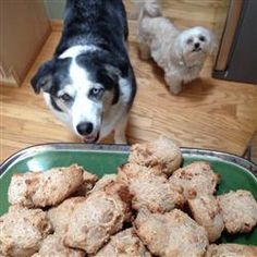 Brie's Banana and Honey Dog Treats Ingredients: 2 cups water 2 mashed bananas 2 tbsps honey 1 tsp vanilla extract 1 egg cups wheat flour 1 tsp baking powder Dog Treat Recipes, Dog Food Recipes, Cooking Recipes, Homemade Dog Treats, Pet Treats, Peanut Butter Biscuits, Cute Cookies, Dog Cookies, Banana And Egg