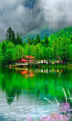 Good Morning Beautiful Images, Beautiful Photos Of Nature, Beautiful Gif, Amazing Nature, Nature Photos, Beautiful Gardens, Beautiful Landscape Wallpaper, Beautiful Flowers Wallpapers, Scenery Wallpaper